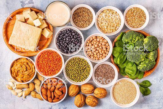 植物性蛋白質