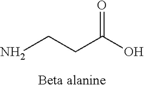 β-丙氨酸構造