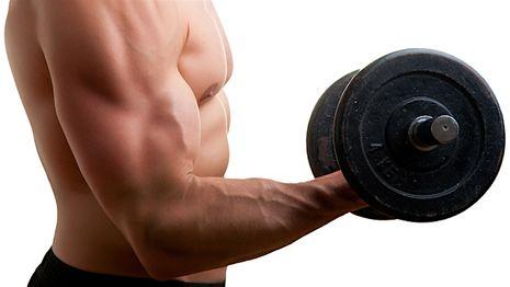 訓練二頭肌的動作