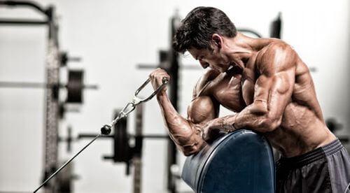 力竭式訓練法對肌肉做出更大程度的刺激