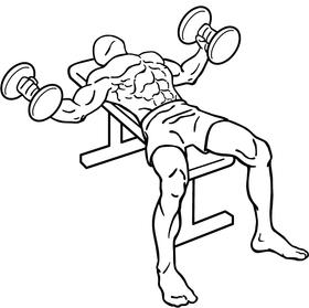 有效訓練胸肌的動作(4個有效的訓練動作!)
