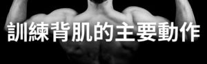 訓練背肌的主要動作(6個有效訓練背肌的動作!)