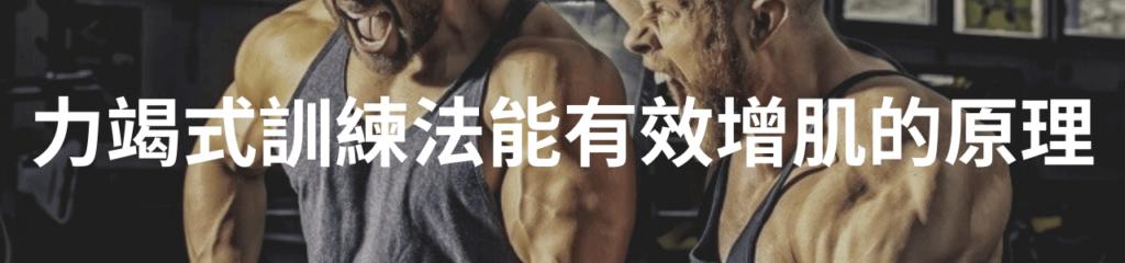 力竭式訓練法能有效增肌的原理