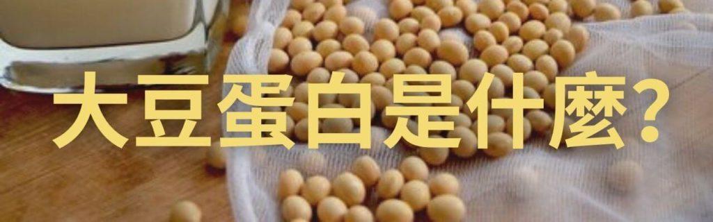 大豆蛋白是什麼?(帶你快速了解!)