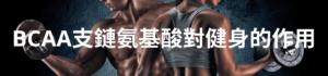 BCAA支鏈氨基酸對健身的作用
