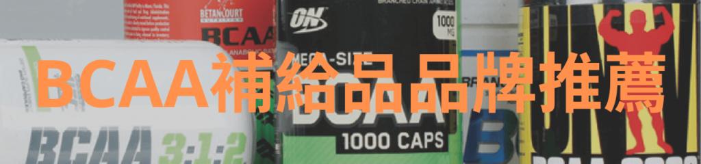 BCAA補給品品牌推薦