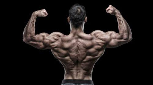 背肌巨人組訓練