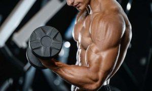 手臂二頭肌巨人組訓練