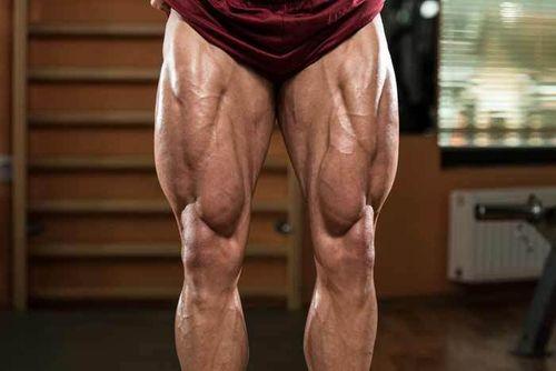 腿部股四頭肌巨人組訓練