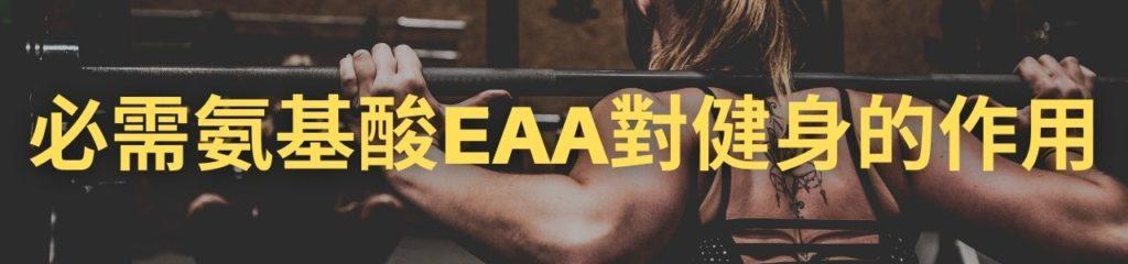 必需氨基酸EAA對健身的作用