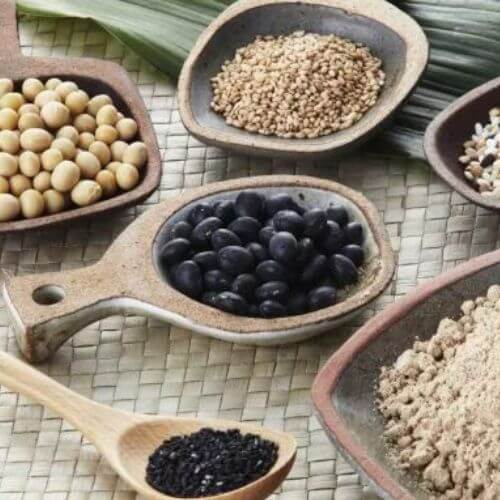 攝取更多植物蛋白質