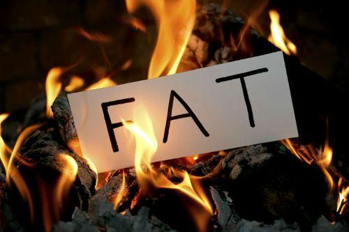 左旋肉碱促進脂肪燃燒效率