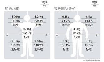 第4個部分:肌肉均衡、節段脂肪分析